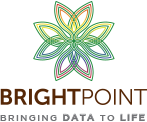 BrightPoint Consulting – HTML5 Data Visualization